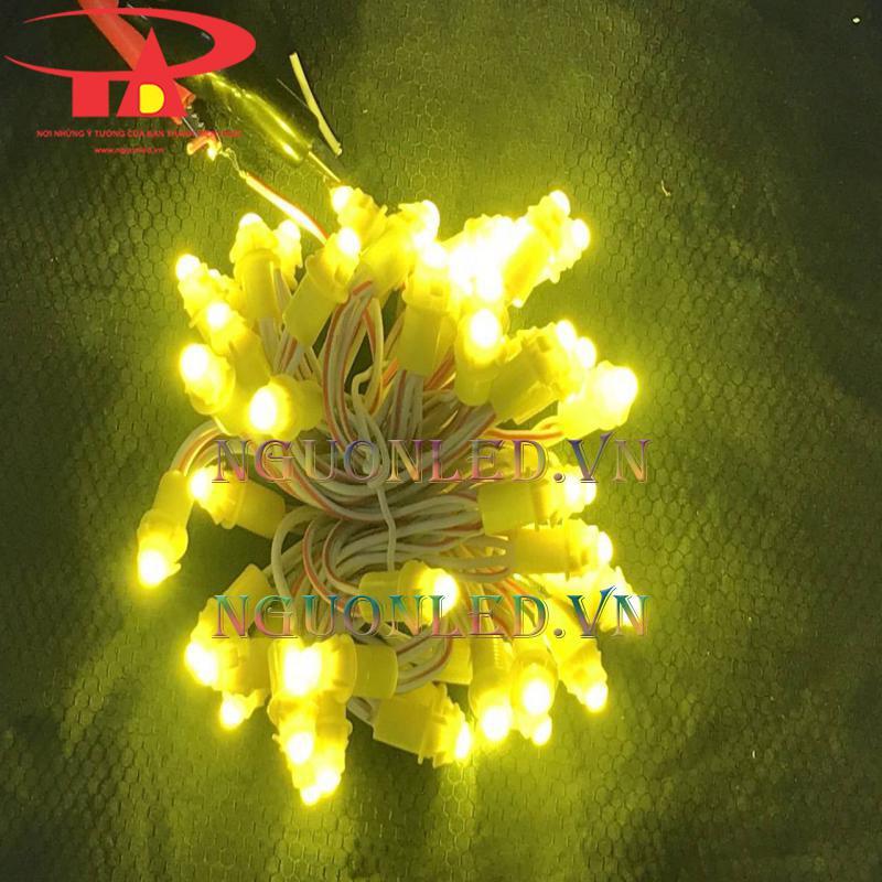 Đèn led đúc f5 12v giá rẻ