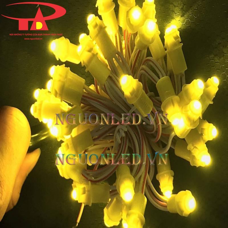 Dây đèn led f5 8 li vàng chùa loại tốt