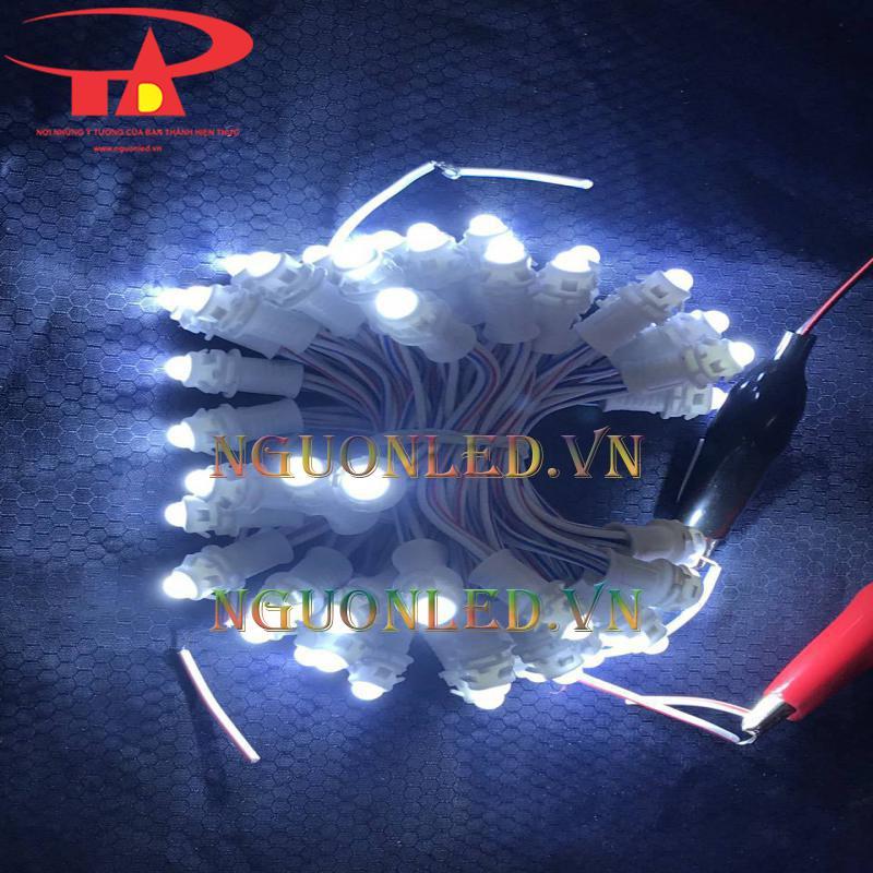 Phân phối sỉ đèn led đúc giá rẻ tại hcm