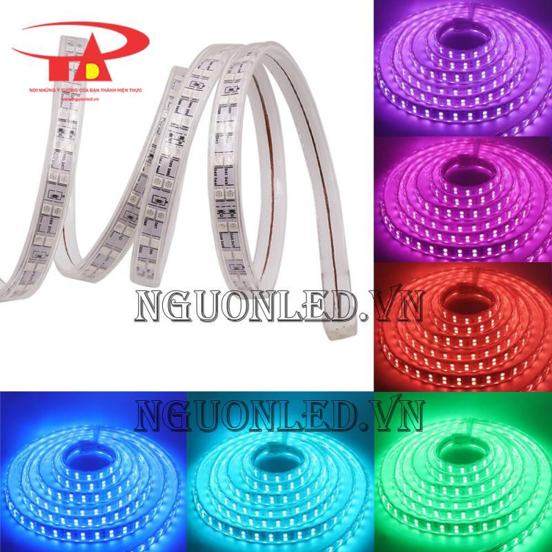 led dây 2 hàng  led 2835 nhật tảo