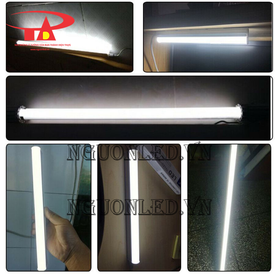 đèn led t5 giá rẻ chiết khấu cao