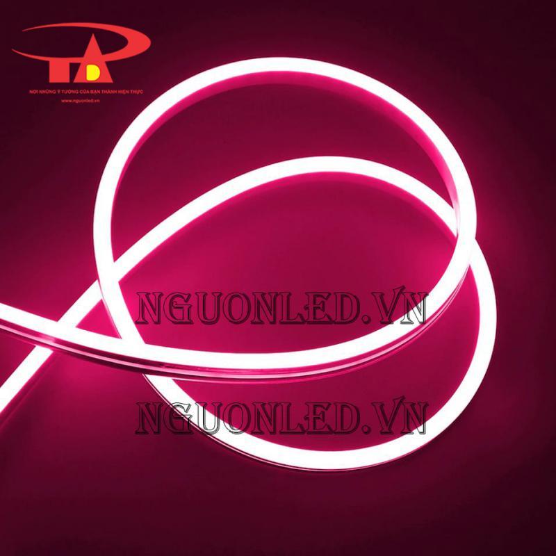 dây led neon màu hồng