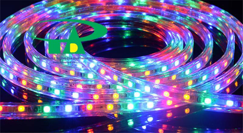 Đèn led dây 5050 đủ màu cuộn 100m 220V loại tốt, siêu sáng, giá rẻ dùng chiếu sáng gốc cây, biển hiệu, hồ bơi, ngoài trời, quán bar, noel