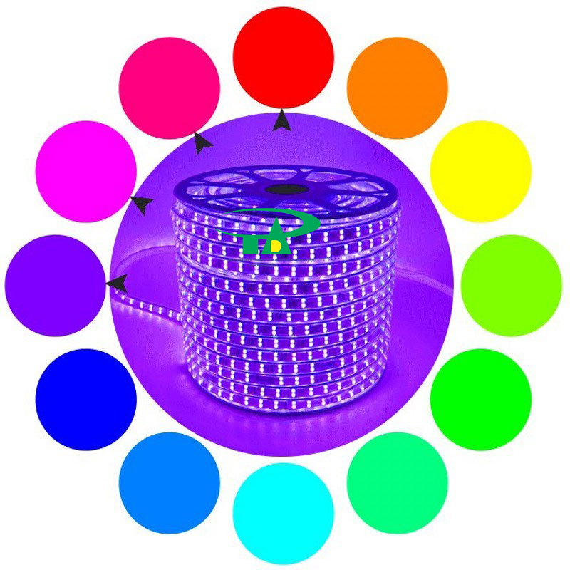 Đèn LED dây 5050 cuộn 100m điện 220V màu hồng loại tốt dùng trang trí nội thất, chiếu sáng ngoài trời, quán gốc cây, nhà hàng, khách sạn