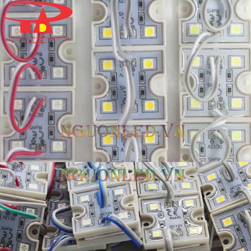 Led module 4 bóng giá rẻ