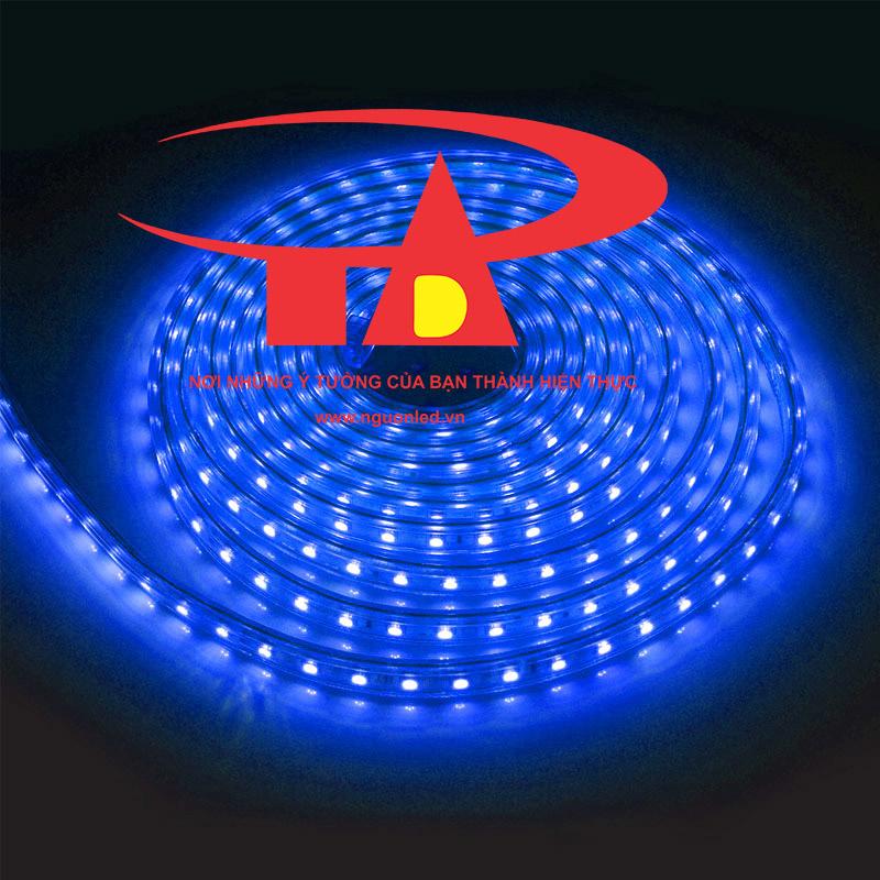 Đèn led dây 220V dài 100m chíp 5050 màu xanh dương, nguonled.vn